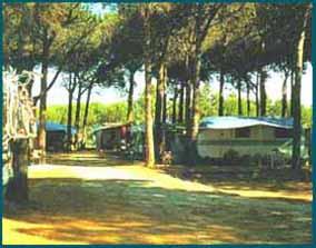 Camping Zadina