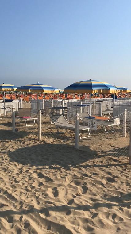 Rimini dog beach 81